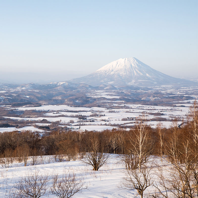 About Niseko